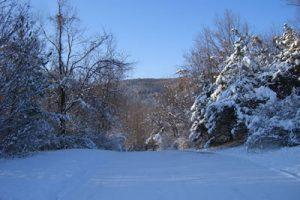 Winter-Gate
